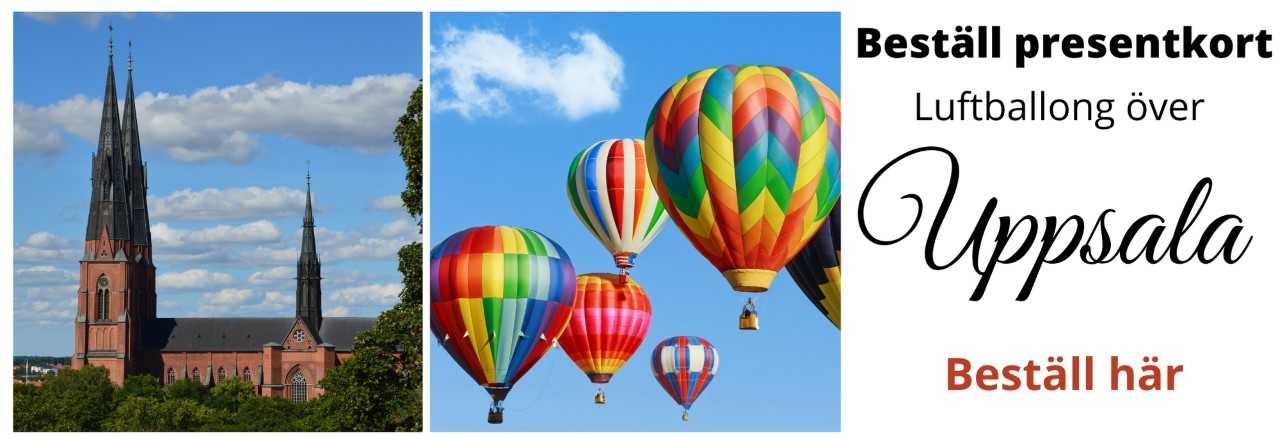 flyga luftballong över uppsala